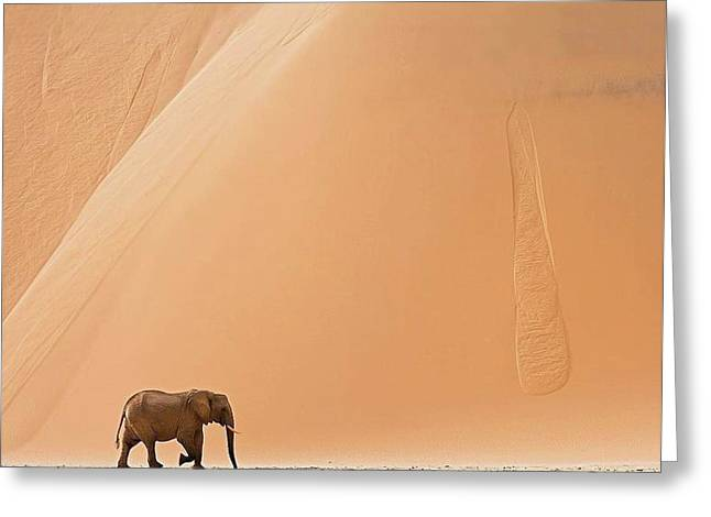Namibia Greeting Card by Happy Home Artistry
