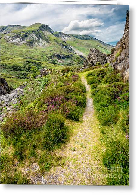 Nant Ffrancon Footpath Greeting Card by Adrian Evans
