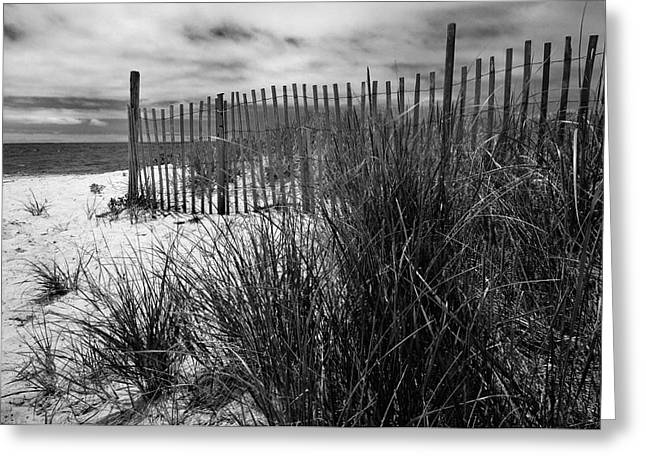 Nantucket Harbor Beach Dunes  Greeting Card by Thomas Schoeller