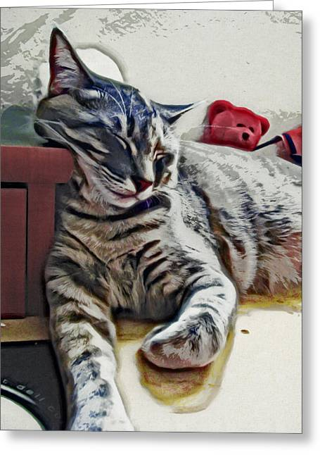 Cat Prints Photographs Greeting Cards - Nap Number Ten Greeting Card by David G Paul