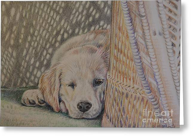 Nap Time Greeting Card by Gail Dolphin