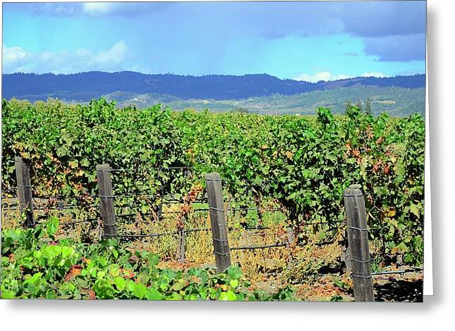 Greeting Card featuring the photograph Napa by Corinne Rhode