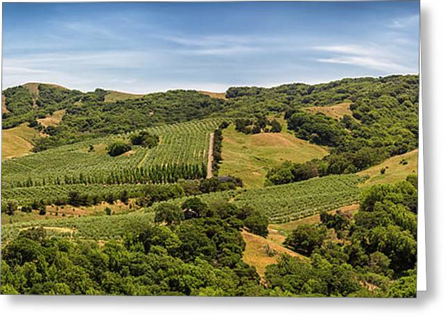 Greeting Card featuring the photograph Napa Valley California Panoramic by Adam Romanowicz