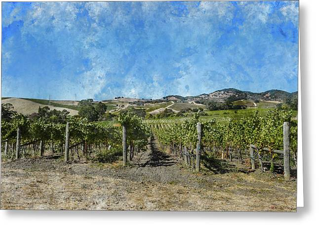 Napa Valley Vineyard Landscape Greeting Card by Brandon Bourdages