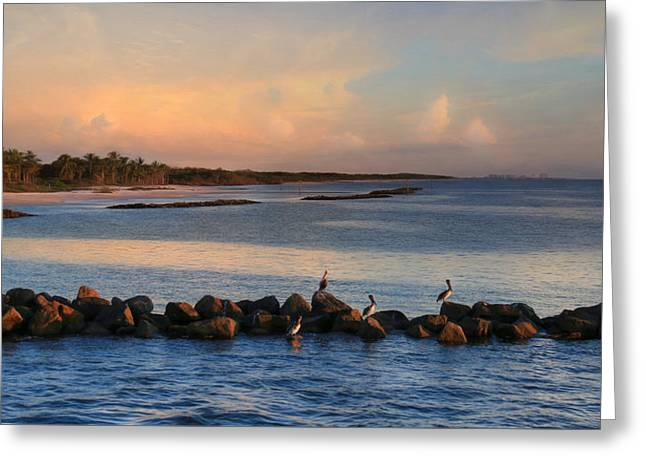 Naples Coast Greeting Card by Lori Deiter