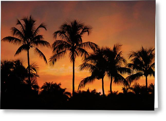 Naples Sunset Greeting Card by Lori Deiter