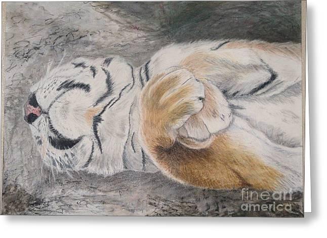 Napping Greeting Card by Maris Sherwood