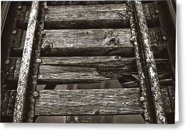 Narrow Gauge Tracks #photography #art #trains Greeting Card