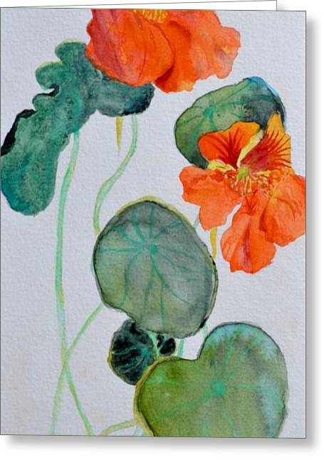 Nasturtiums Study Two Greeting Card