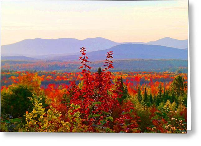 National Scenic Byway Greeting Card