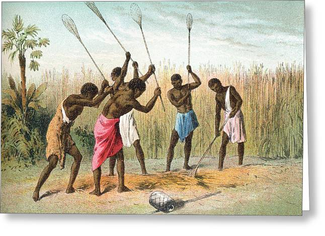 Native Africans Beating Sorghum, Or Greeting Card by Vintage Design Pics