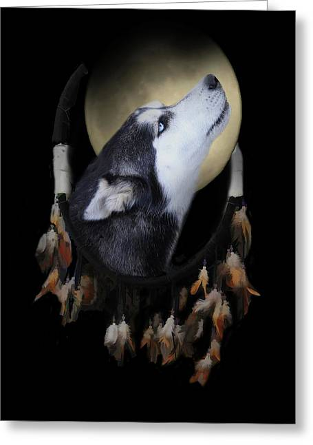 Native American Dream Catcher Wolf Husky Dog  Greeting Card by Stephanie Laird
