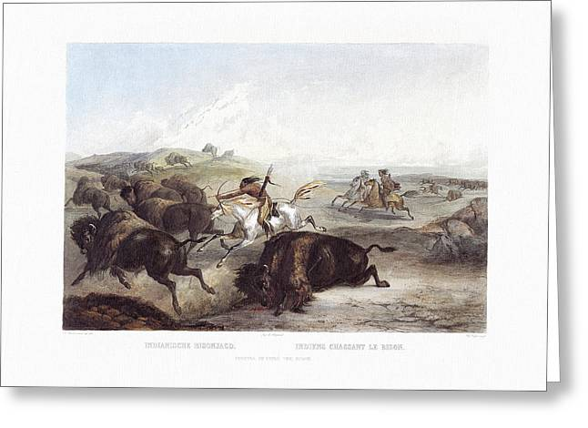 Native American Indians Hunting The Bison Wall Art Prints Greeting Card