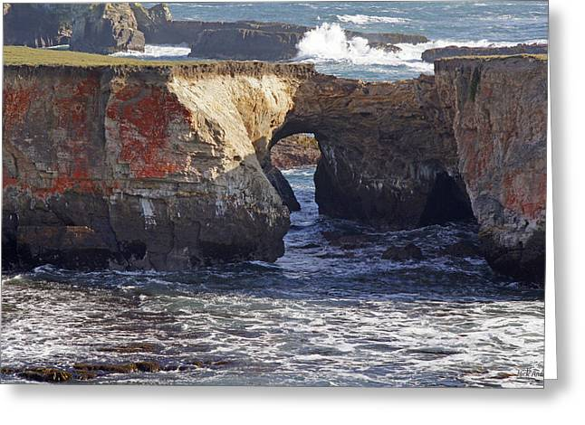 Natural Bridge At Point Arena Greeting Card by Mick Anderson