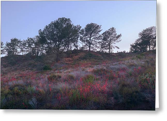 Greeting Card featuring the photograph Natural Embers by Alexander Kunz