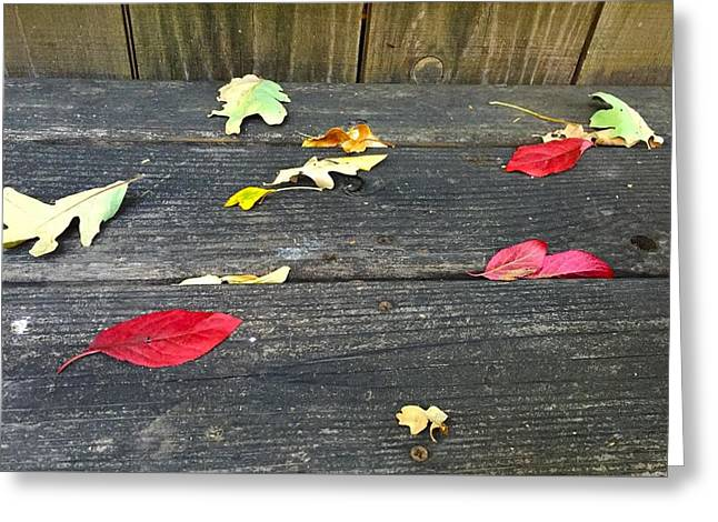 Natural Fall Greeting Card