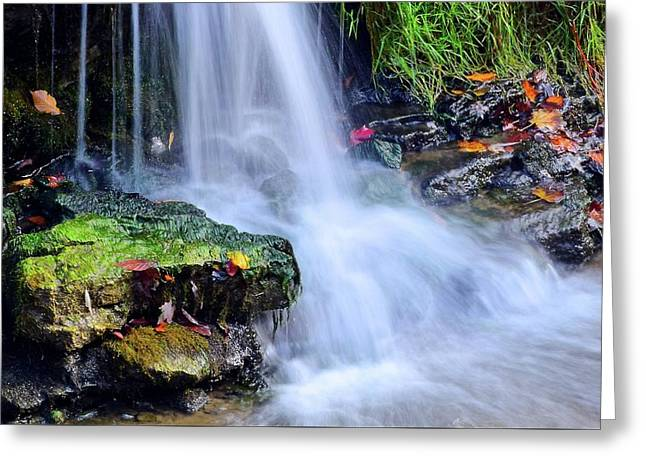 Natural Flowing Water Greeting Card by Frozen in Time Fine Art Photography
