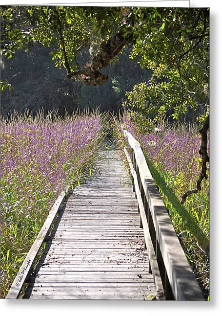 Greeting Card featuring the photograph Natural Healing by John Knapko