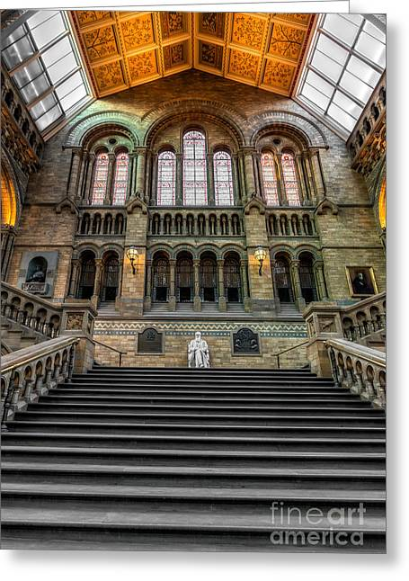Natural History Museum Greeting Card