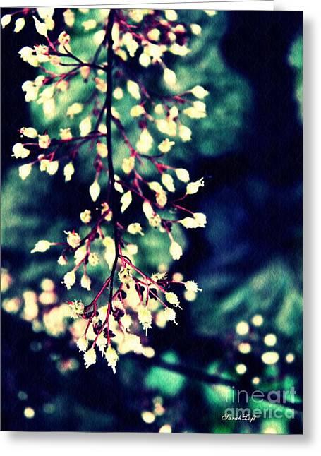 Natural Lace 2 Greeting Card by Sarah Loft