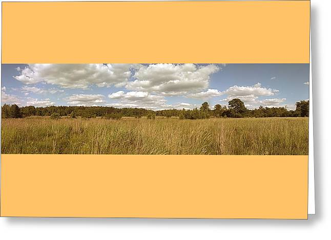 Natural Meadow Landscape Panorama. Greeting Card