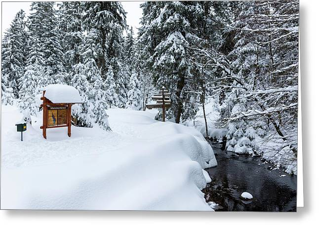 Greeting Card featuring the photograph Natural Monument Oderteich, Harz by Andreas Levi