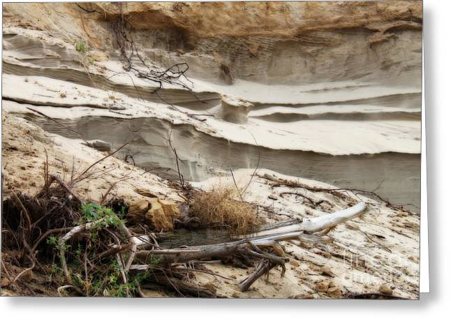 Natural Sand Castles Greeting Card by Cathy  Beharriell