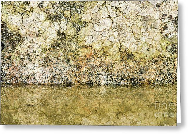 Greeting Card featuring the photograph Natural Stone Background by Torbjorn Swenelius