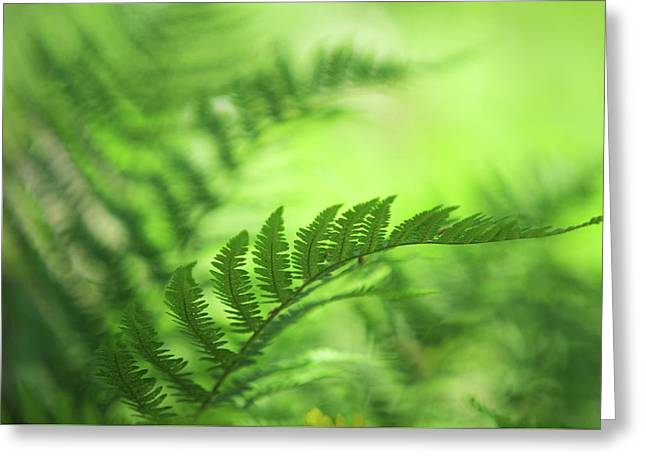 Natural Vibes. Green World Greeting Card