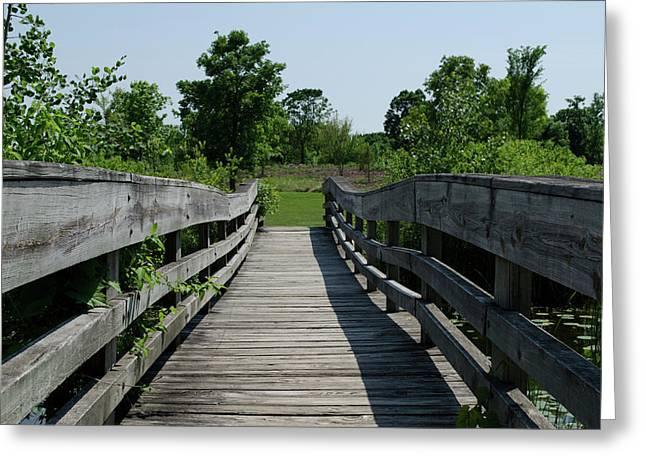 Nature Bridge Greeting Card