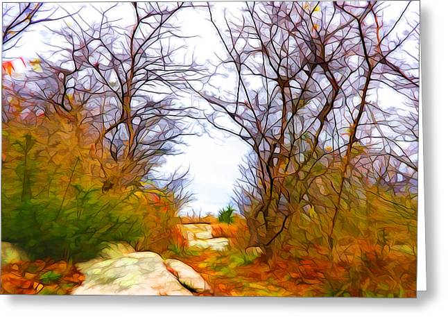 Nature Colors Greeting Card by Lilia D