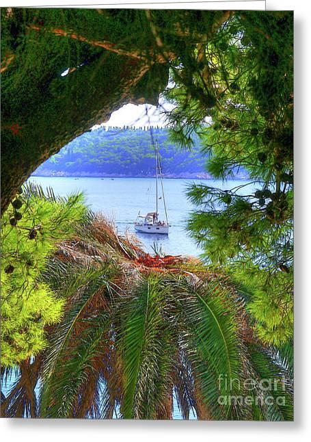 Nature Framed Boat Greeting Card