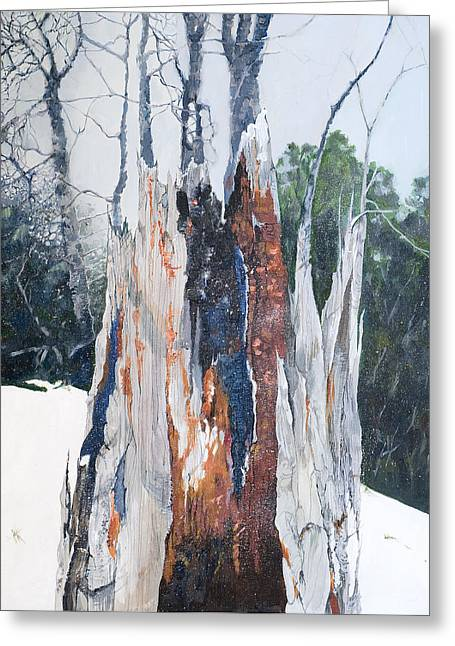 Nature Giveth And She Taketh Away         Greeting Card by Virginia McLaren