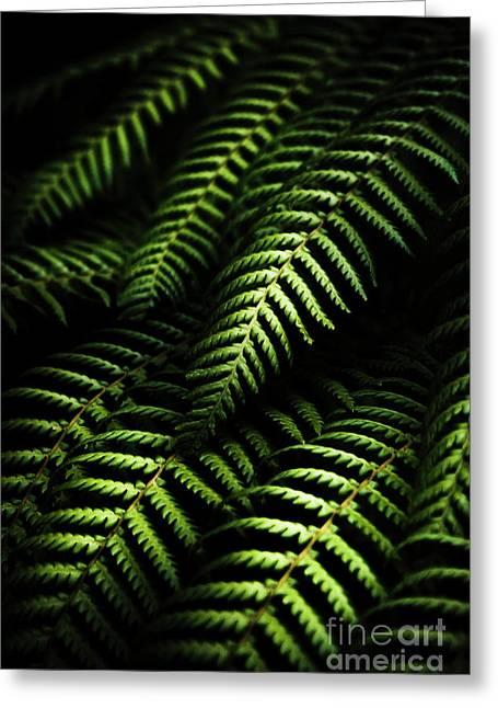 Nature In Minimalism Greeting Card