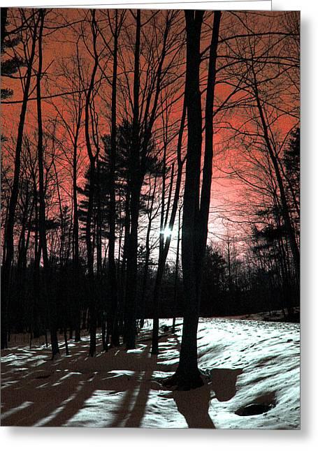 Nature Of Wood Greeting Card by Mark Ashkenazi