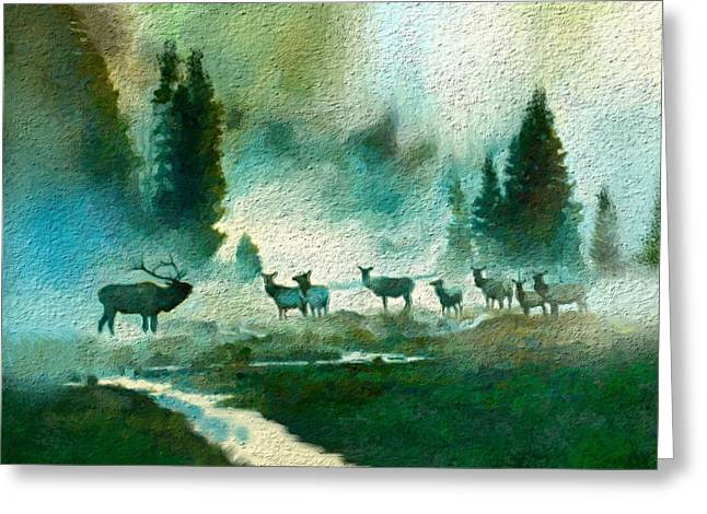 Nature Scene Greeting Card by Anthony Fishburne