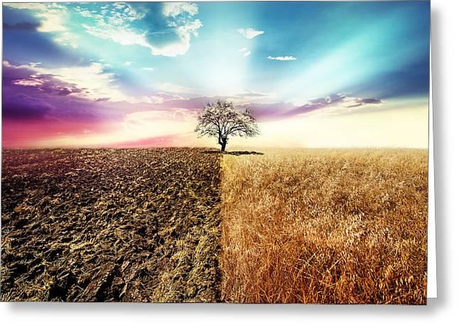 Nature Simetry Greeting Card by Ivan Vukelic