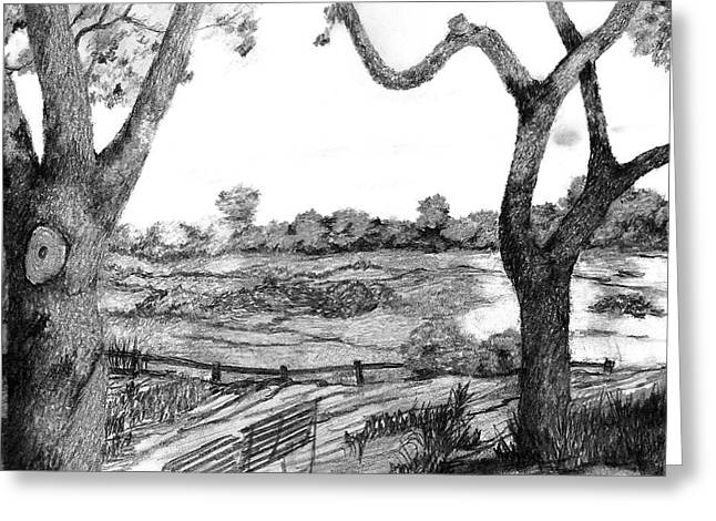 Nature Sketch Greeting Card