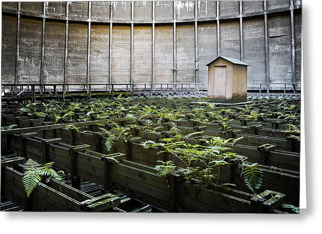 Greeting Card featuring the photograph Nature Takes Back - Inside Cooling Tower by Dirk Ercken