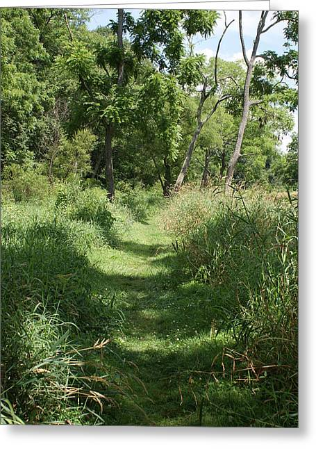 Nature Trail Greeting Card by Heather Green