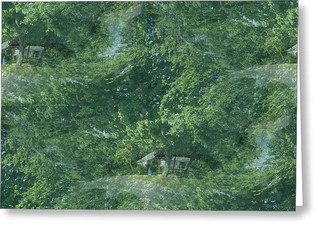 Greeting Card featuring the photograph Nature Trees Fractal by Skyler Tipton