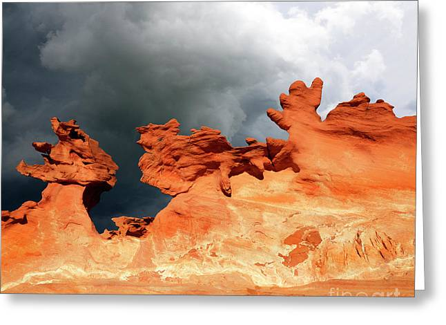 Nature's Artistry Nevada Greeting Card by Bob Christopher