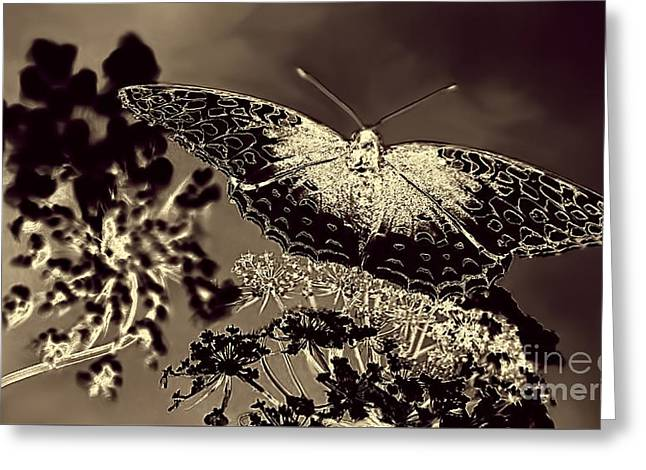 Natures Beauty Greeting Card by Arnie Goldstein