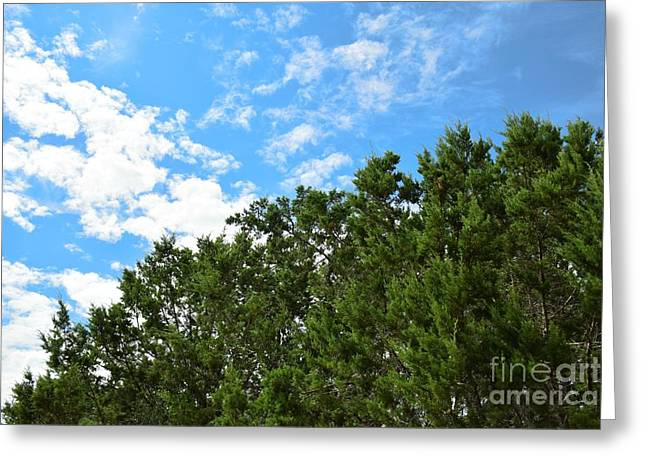 Nature's Beauty - Central Texas Greeting Card