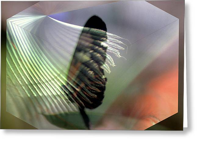 Greeting Card featuring the digital art natures Caress by Irma BACKELANT GALLERIES