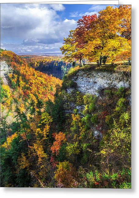 Natures Colors Greeting Card by Mark Papke