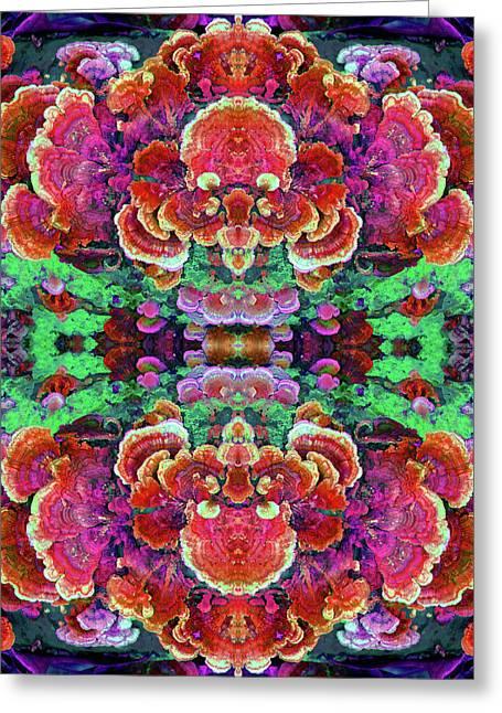 Nature's Drum Greeting Card