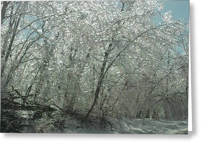 Greeting Card featuring the photograph Nature's Frosting by Ellen Levinson