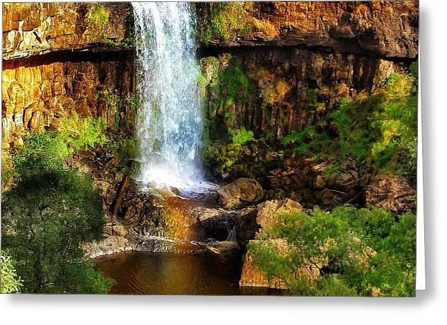 Natures Gift Greeting Card by Blair Stuart