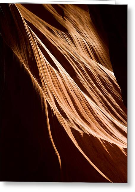 Light Beams Greeting Cards - Natures Lines Greeting Card by Adam Romanowicz